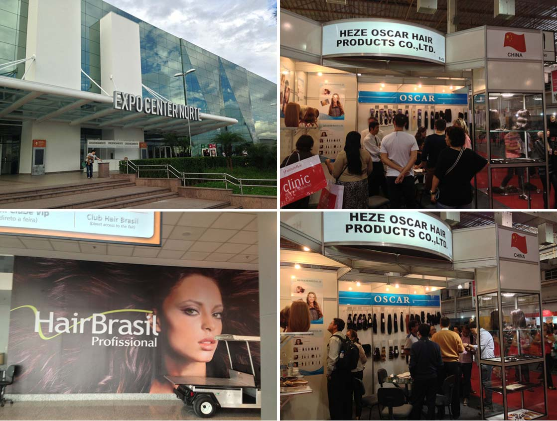 2013 Hair Brasil Profissinal